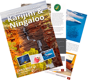 Download Karijini & Ningaloo Tour Brochure