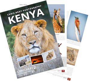 Kenya Tour Brochure