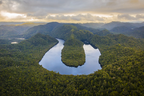Horseshoe Bend, Gordon River