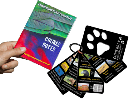 photography course handbook and clip cards