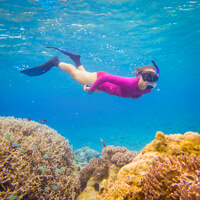 cocos island photo tour snorkeling