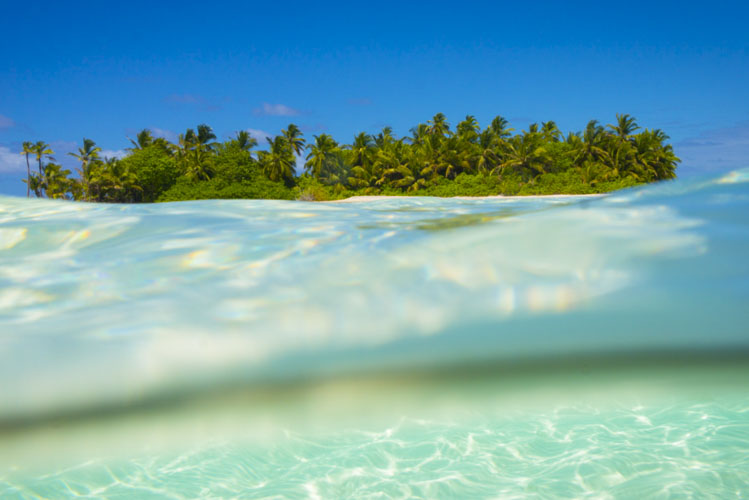 cocos island photo tour tropical paradise