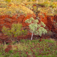 Karijini Ningaloo photo tour landscapes gorges