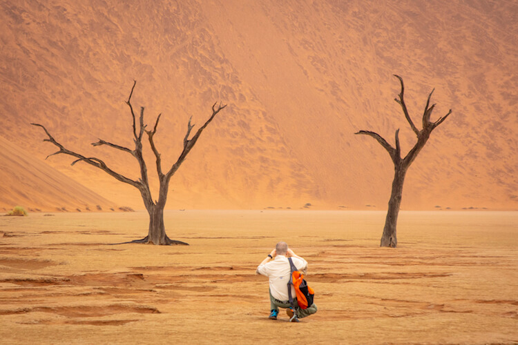 namibia botswana photo tour orxy red dunes