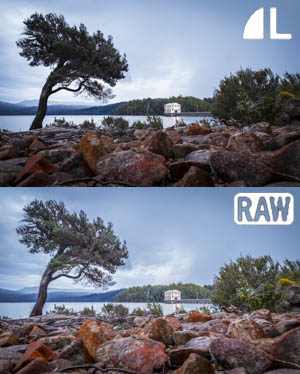 Shoot raw rather than jpg to be able to lift our shadows and pull back highlights later